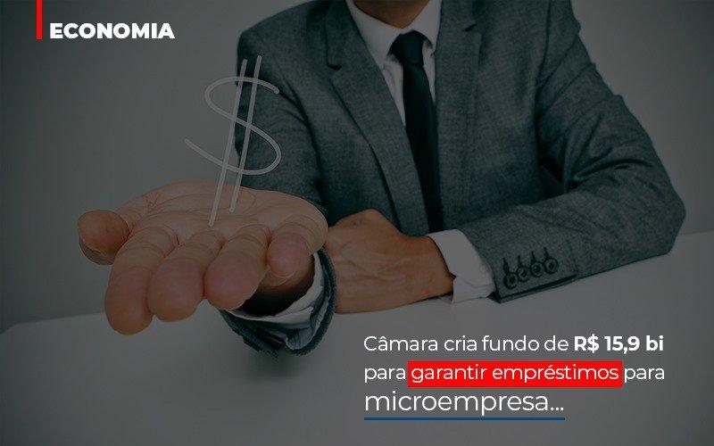 Camara Cria Fundo De Rs 15 9 Bi Para Garantir Emprestimos Para Microempresa Notícias E Artigos Contábeis - Pontual Contadores & Associados