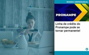 Linha De Credito Do Pronampe Pode Se Tornar Permanente - Pontual Contadores & Associados